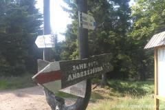 SAM_4213